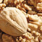 Переработка грецкого ореха